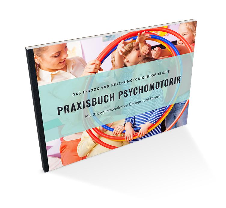 Praxisbuch Psychomotorik